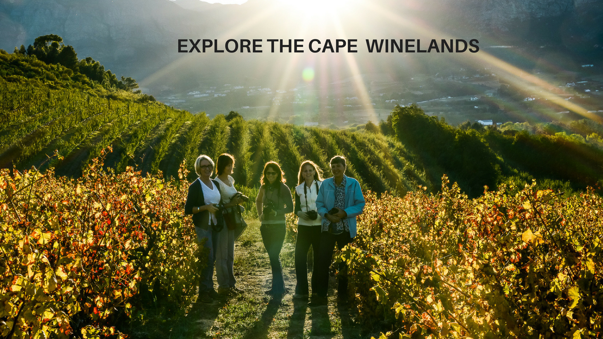 CAPE WINELANDS – we offer Cape add-on's to this Tour