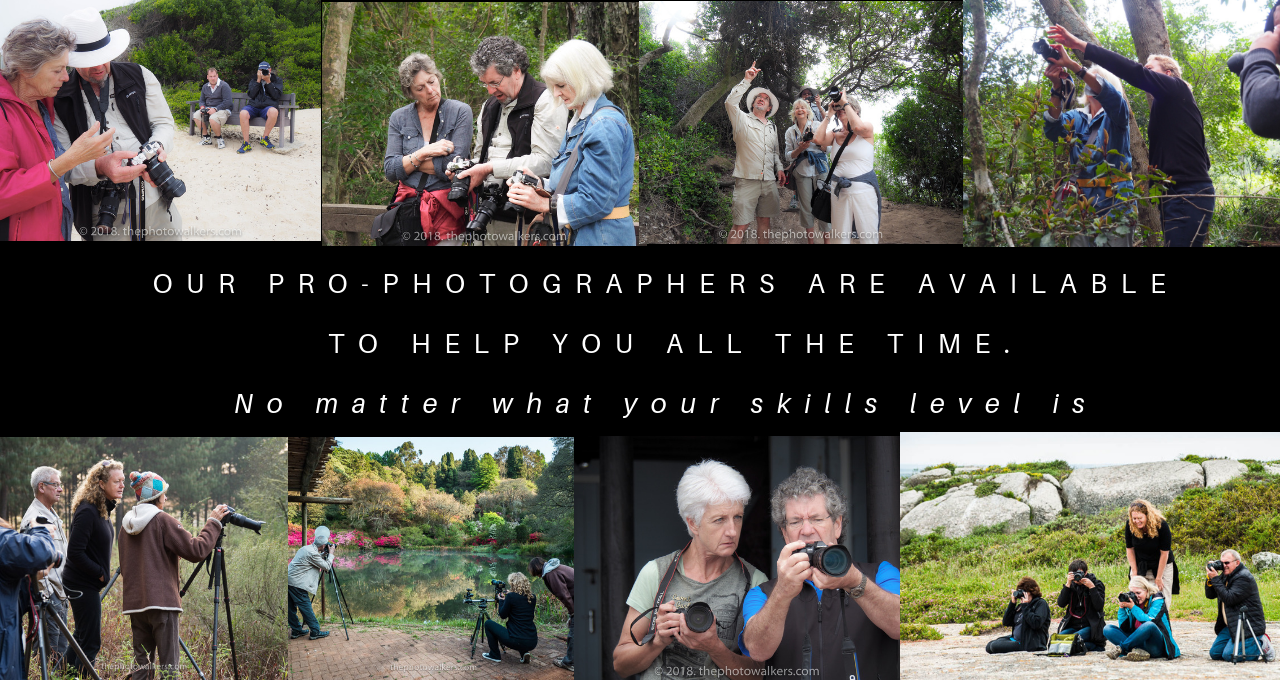 ACCREDITED PRO PHOTOGRAPHERS