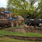A Waking Farm