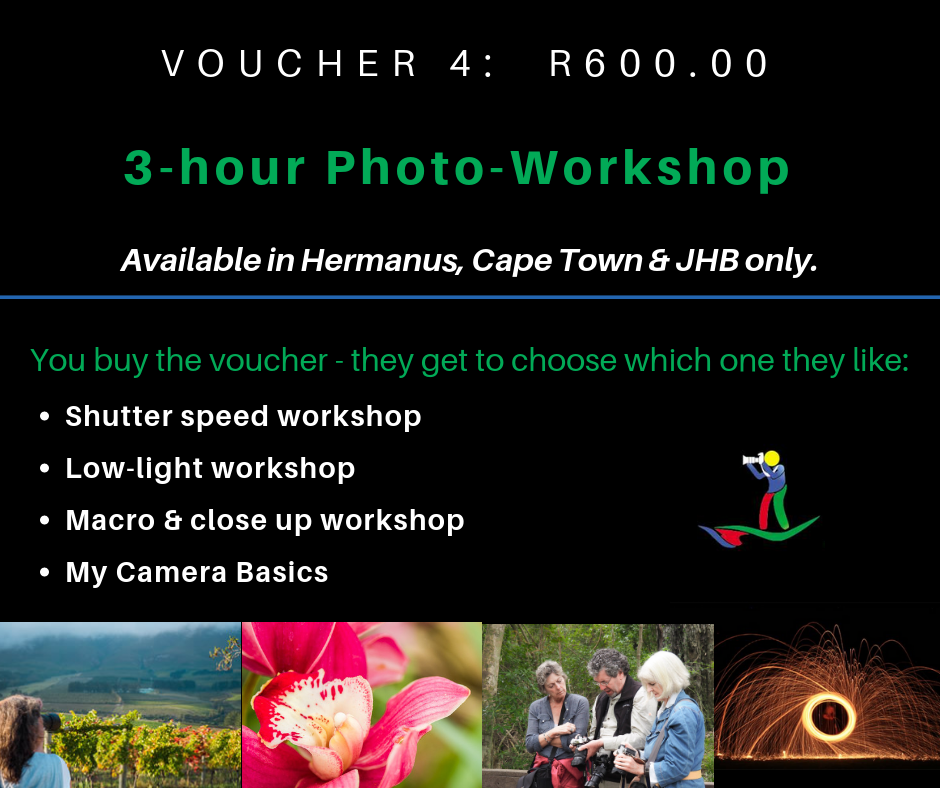VOUCHER 4 - THREE(3) HOUR WORKSHOP IN A SMALL GROUP