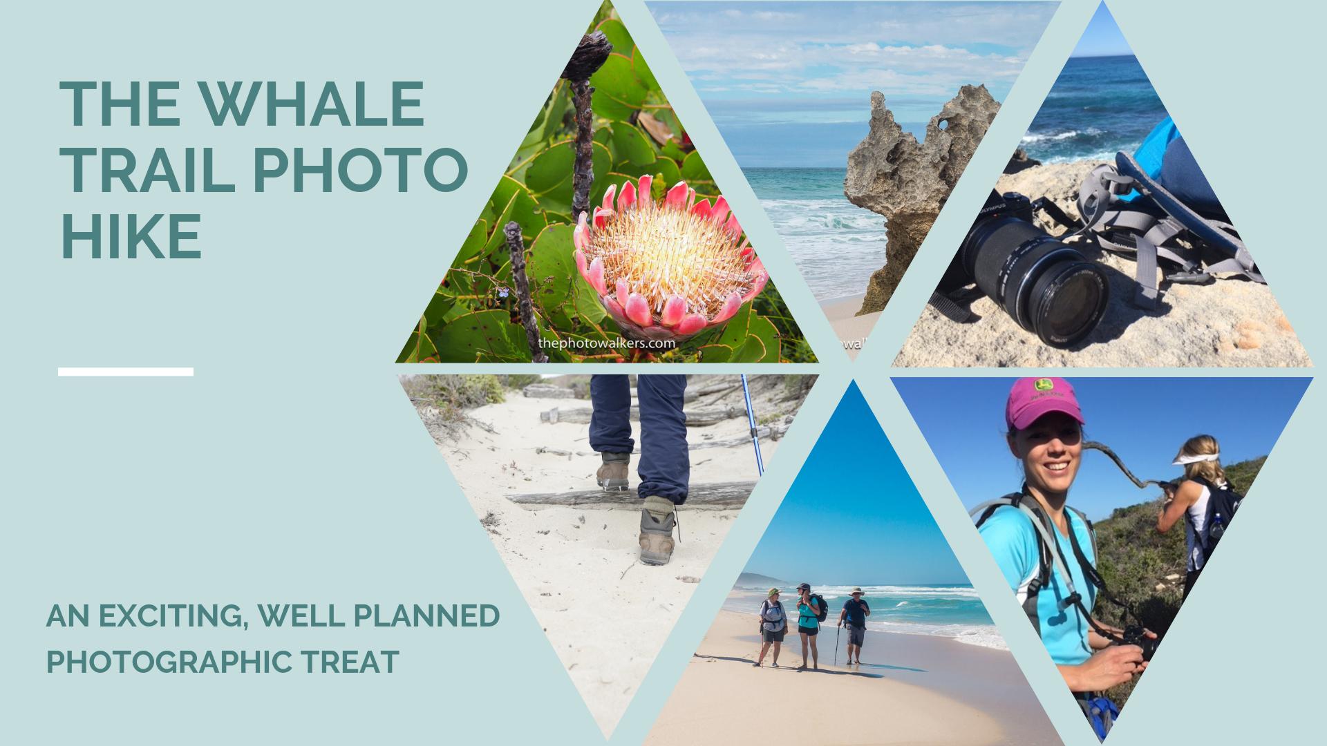 The Whale Trail Photo Hike