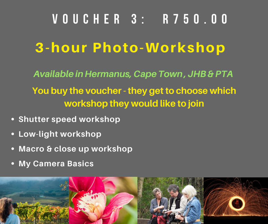 VOUCHER 3 - THREE(3) HOUR WORKSHOP IN A SMALL GROUP