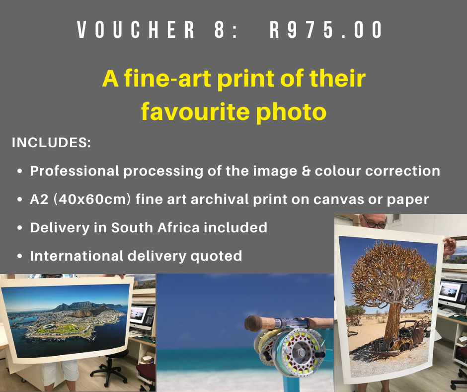 VOUCHER 8 - A FINE ART PRINT OF THEIR FAVOURITE PHOTO